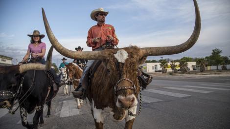 Dallas Texas Gastronomia Entretenimento E Compras