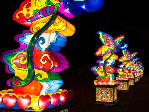 Uma grande linha de lanternas coloridas no Chinese Lantern Festival
