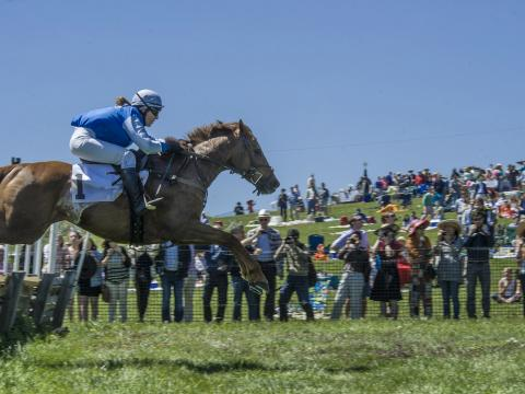 Evento de salto a cavalo do Point-to-Point at Winterthur – Wilmington, Delaware