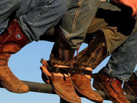 Botas de cowboy em exibição na Feira rural de Idaho