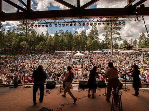 Um pouco do Pickin in the Pines (Festival de música na floresta)