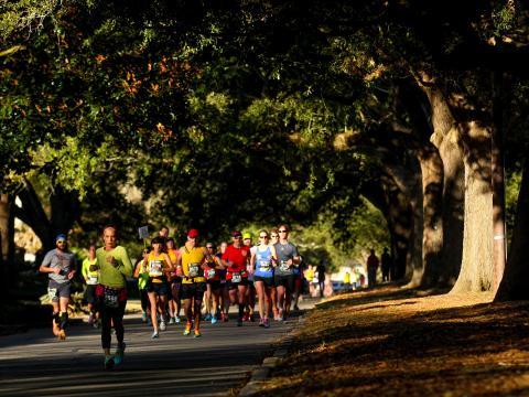 Correndo sob os carvalhos na Maratona de Louisiana