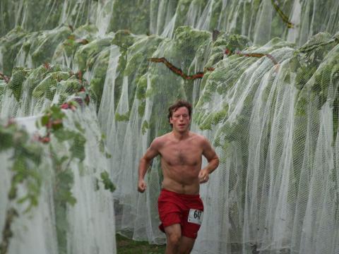 Corrida em meio às parreiras durante a Harvest Stompede