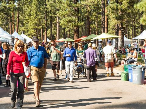 Passeando por Sample the Sierra (Festival artístico e gastronômico de Sierra)