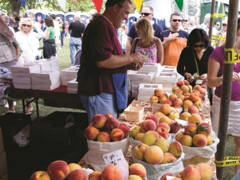 Um fazendeiro vendendo pêssegos frescos no Annual Niagara County Peach Festival (Festival Anual dos Pêssegos do Condado de Niágara)