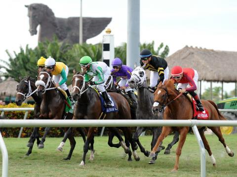 Corrida de cavalos em andamento na Pegasus World Cup Invitational, no Gulfstream Park (Parque Gulfstream), na praia de Hallandale