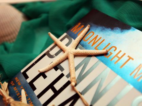 Conchas e livros na Ilha Amélia, Flórida