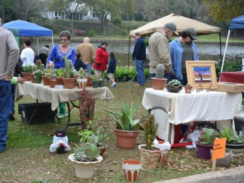 Plants for sale during Bloomin' on the Bricks