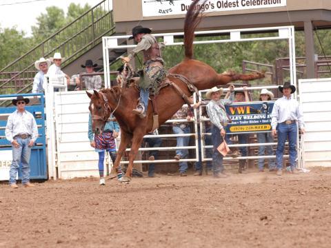 A diversão de um rodeio durante a comemoração Durango Fiesta Days