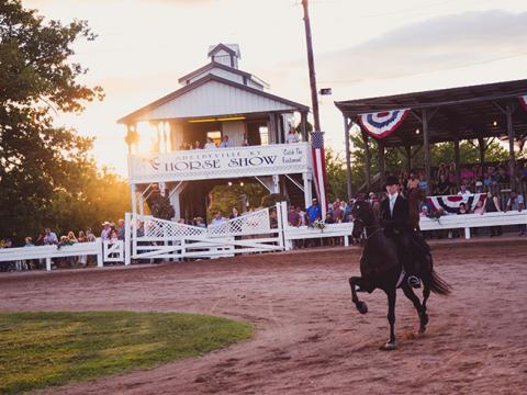 Cavalo e cavaleiro competindo no Shelbyville Horse Show em Shelbyville, Kentucky