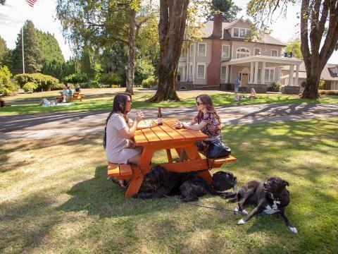 Pets são bem-vindos na degustação de vinhos da Canines Uncorked em Tualatin Valley, Oregon