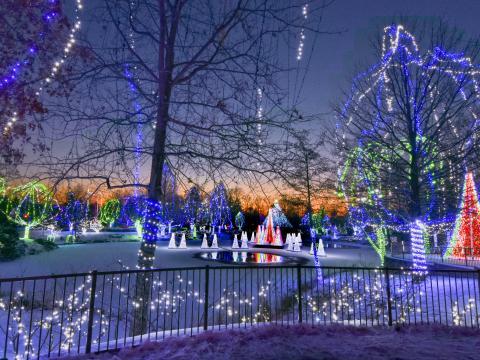 Exposição Wildlights no Columbus Zoo and Aquarium, em Ohio