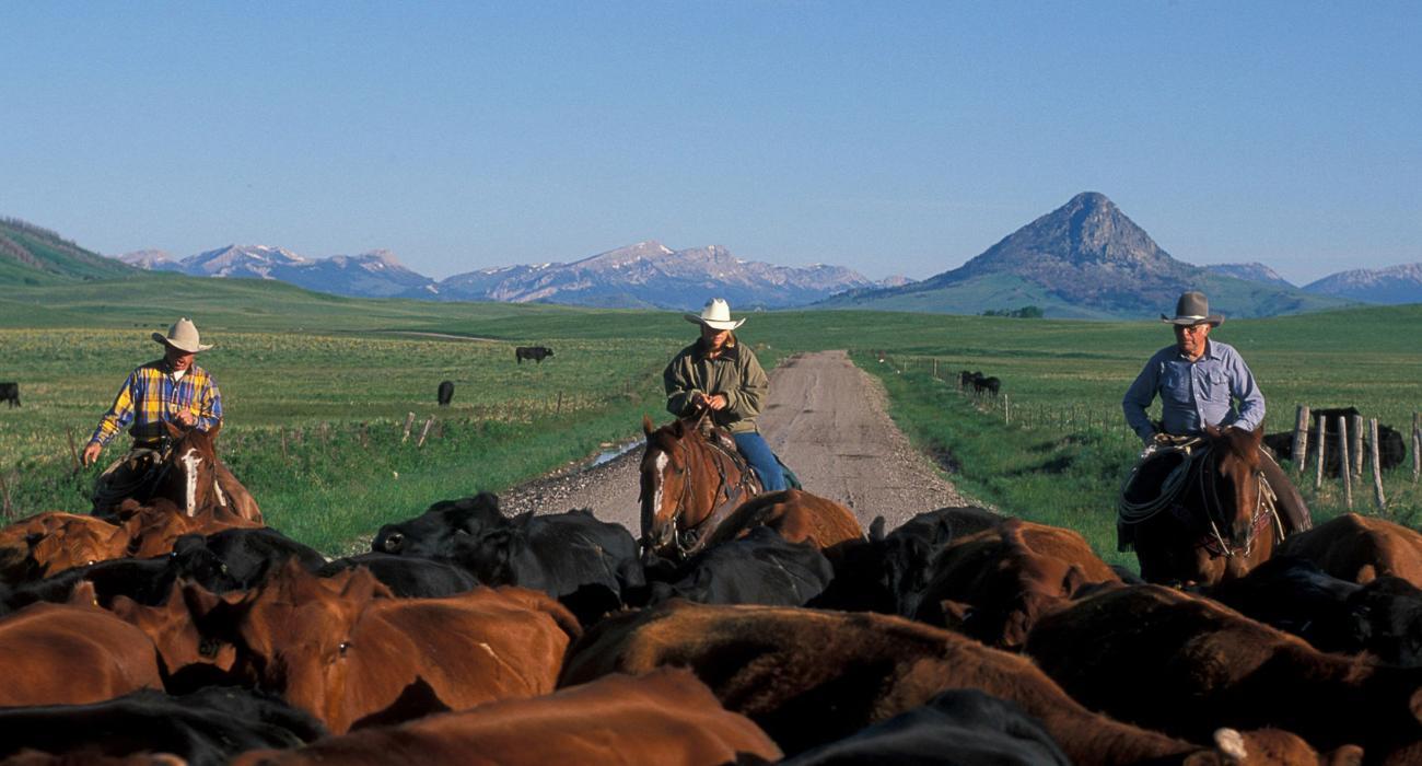 Turismo Em Montana Eua Amp Pontos Tur 237 Sticos De Montana Eua